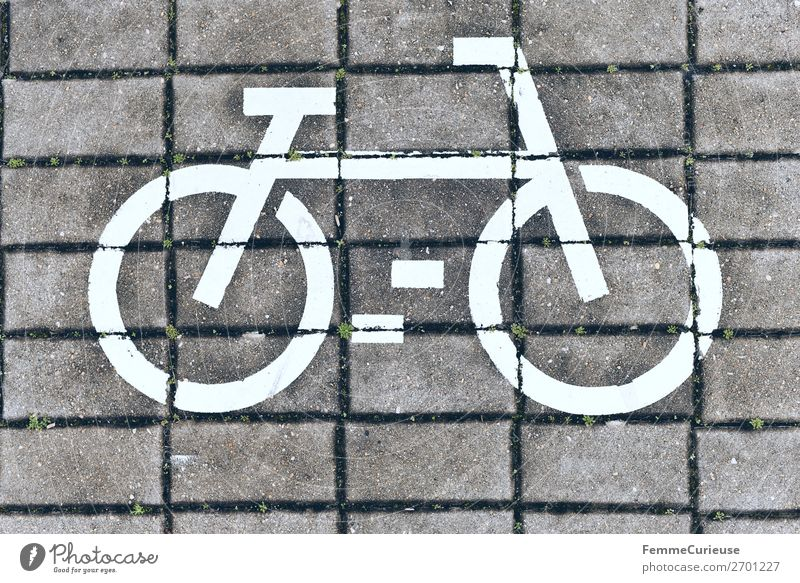 White bicycle symbol on cobblestones Sign Signs and labeling Movement Footpath Sidewalk Paving stone Bicycle Cycle path Cycling Cycling tour Colour photo