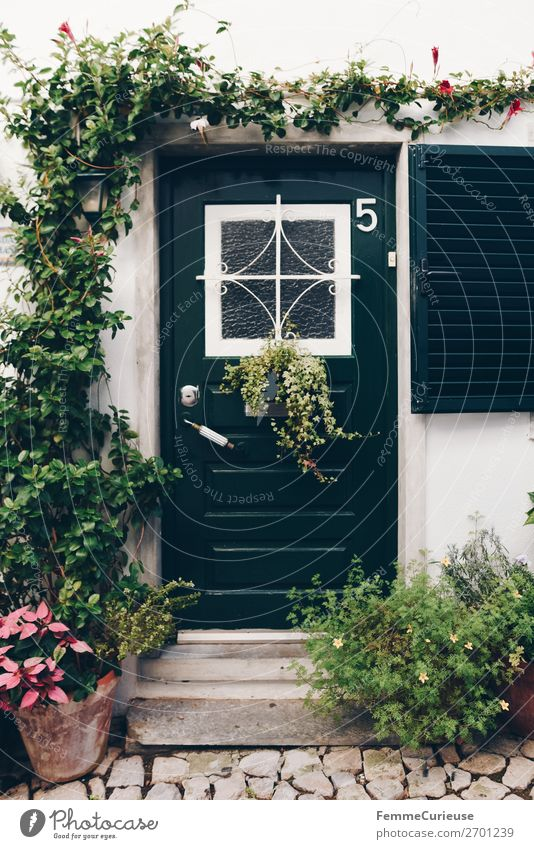 Vacation & Travel Plant House (Residential Structure) Travel photography Living or residing Decoration Door Portugal Dark green