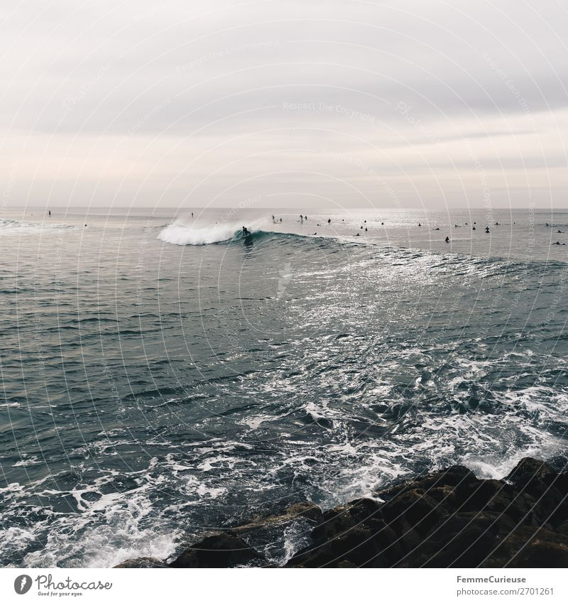 Surfers in the Atlantic Ocean Port City Movement Ease Freedom Surfing Waves Stone Water Covered Clouds Portugal Colour photo Exterior shot Copy Space top