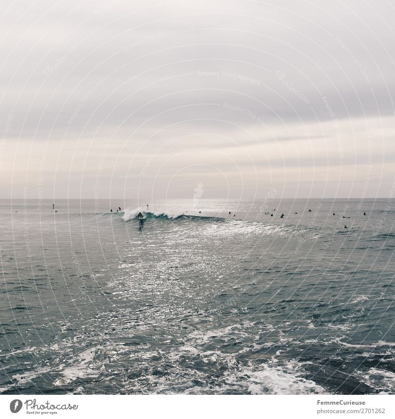Surfers in the Atlantic Ocean Nature Movement Vacation & Travel Surfing Portugal Water Swell Clouds Colour photo Exterior shot Copy Space top Day