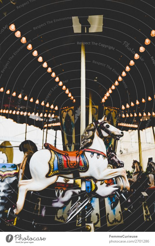 Illuminated horse carousel Leisure and hobbies Movement Hobbyhorse Carousel Electric bulb Lighting Multicoloured Attraction Fairs & Carnivals Colour photo
