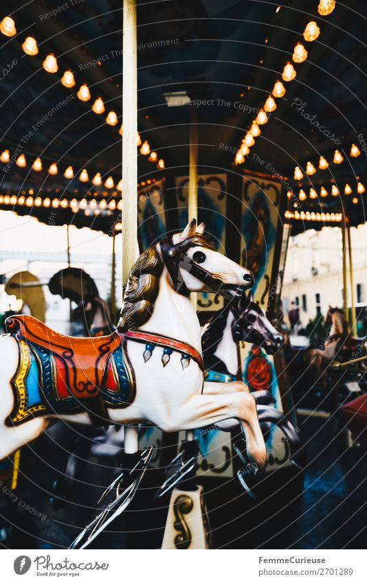 Illuminated horse carousel Leisure and hobbies Movement Hobbyhorse Carousel Fairs & Carnivals Rotate Lighting Attraction Colour photo Exterior shot