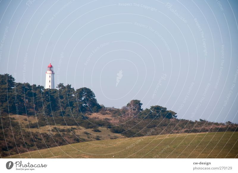 Hiddensee | Greetings from the island Vacation & Travel Tourism Trip Freedom Sightseeing Summer vacation Island Nature Landscape Plant Cloudless sky