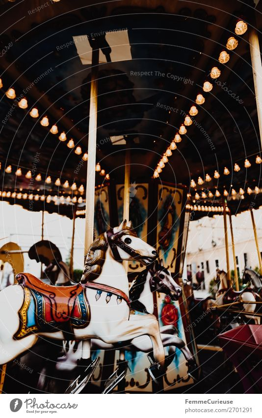 Illuminated horse carousel Leisure and hobbies Movement Hobbyhorse Carousel Attraction Fairs & Carnivals Rotate Lighting Electric bulb Colour photo