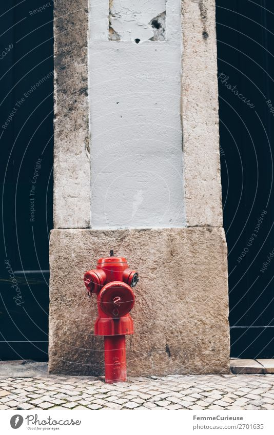 Red hydrant in Portugal House (Residential Structure) Fire hydrant Water Water supply Paving stone Cobblestones Facade Lisbon Colour photo Exterior shot