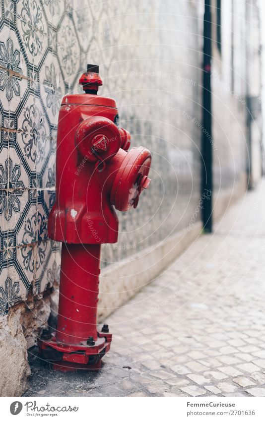 Red hydrant in front of colorful tile wall in Portugal House (Residential Structure) Fire hydrant Water Water supply Tile Facade Multicoloured Pattern
