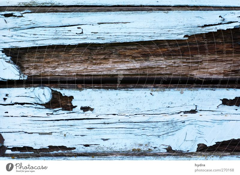 Blue Old Wall (building) Wood Dye Wall (barrier) Brown Facade Broken Transience Putrefy Hut Decline Wooden board Ruin Painter