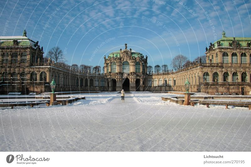 Kennel Dresden Sky Winter Beautiful weather Snow Altocumulus floccus Saxony Germany Europe Downtown Old town Deserted Manmade structures Architecture
