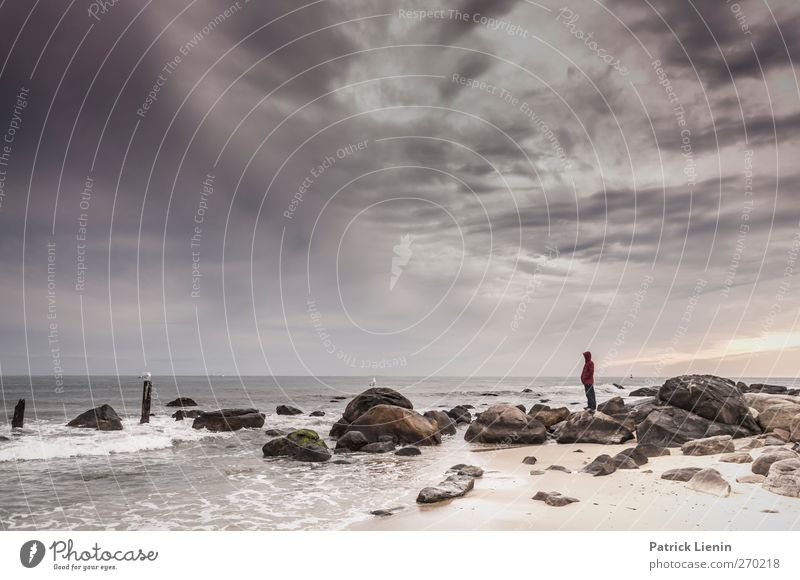 Human being Sky Man Nature Water Ocean Beach Loneliness Clouds Adults Relaxation Environment Landscape Freedom Friendship Body