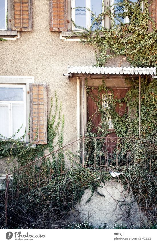 go in House (Residential Structure) Wall (barrier) Wall (building) Stairs Facade Window Door Old Ivy Colour photo Multicoloured Exterior shot Deserted Day
