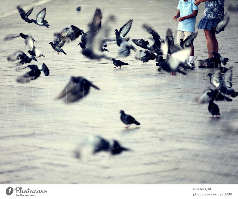 Venetian Kids. Art Esthetic Venice Veneto Italy Italian Pigeon St. Marks Square Aviation Flock Flying Wanderlust Idyll Peaceful Colour photo Subdued colour