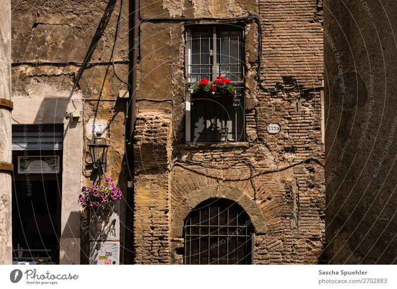 House 3339 Rome Italy Europe Old town House (Residential Structure) Architecture Wall (barrier) Wall (building) Facade Balcony Window Door Town