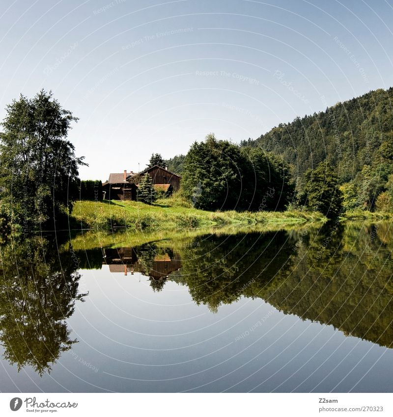 keep watch Vacation & Travel Summer Nature Landscape Water Cloudless sky Tree Bushes Lake River Hut Relaxation Esthetic Calm Adventure Leisure and hobbies Idyll