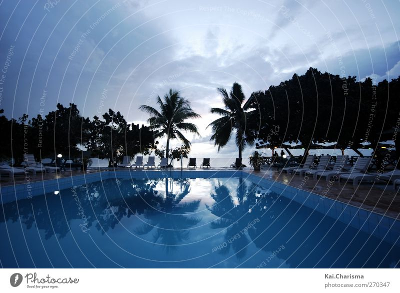Pool and sea in Fiji Vacation & Travel Tourism Far-off places Freedom Summer vacation Beach Ocean Island Blue Colour photo Exterior shot Copy Space top