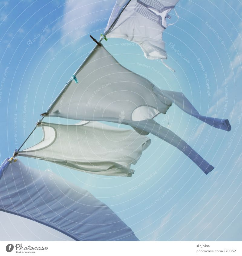 Sky Vacation & Travel Bright Flying Contentment Illuminate Esthetic T-shirt Historic Shirt Washing Gale Hip & trendy Dry Hang Clothesline