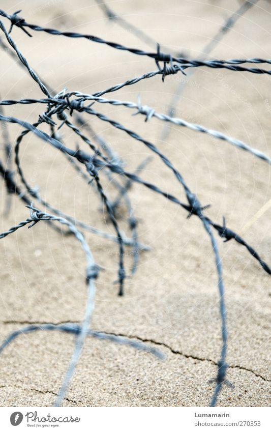 close Beach Sand Metal Aggression Thin Round Point Divide Bans Barbed wire Barbed wire fence Curved Muddled Knot Fence Exclusion zone Barred Border Protection