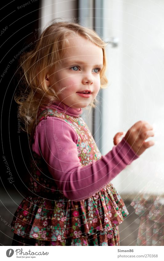 little princess Hair and hairstyles Feminine Child Girl Body 1 Human being 3 - 8 years Infancy Dress Blonde Long-haired Curl Looking Esthetic Free Happy