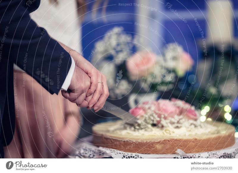Time for wedding cake Couple Partner Love cut Partially visible Cake Knives Gateau wedding celebration Wedding Wedding couple Wedding ceremony Married couple