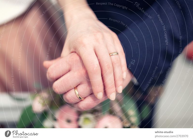 Hand Love Couple Together Circle Wedding Depth of field Relationship Lovers Ring Partner Married couple Matrimony Wedding couple Marriage proposal Wife