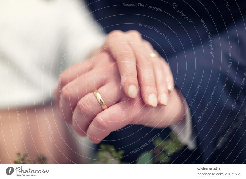 Hand Love Couple Together Circle Wedding Stop Depth of field Relationship Lovers Ring Partner Married couple Matrimony Wedding couple Ceremony