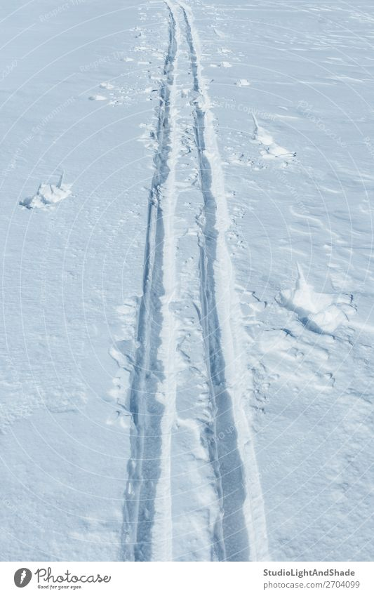Ski tracks in the snow Nature White Relaxation Winter Lifestyle Natural Lanes & trails Snow Sports Fresh Action Seasons Frozen Deep Vertical Consistency
