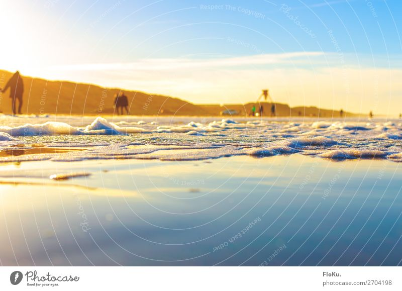 Danish coast in the winter sun Vacation & Travel Tourism Trip Beach Ocean Environment Nature Elements Earth Water Sky Sun Sunlight Winter Beautiful weather