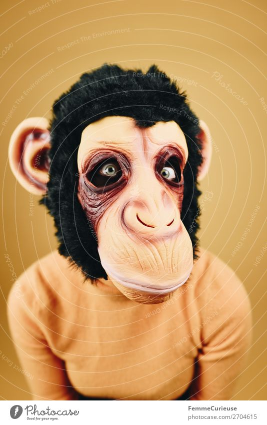 Woman with monkey mask starring into the camera Feminine Adults 1 Human being 18 - 30 years Youth (Young adults) 30 - 45 years Joy Monkeys Chimpanzee Latex Mask