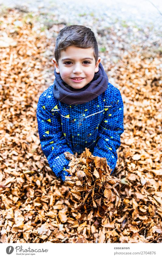 Boy with a heap of leaves in his hands Lifestyle Joy Happy Beautiful Leisure and hobbies Playing Vacation & Travel Expedition Winter Mountain Garden Education