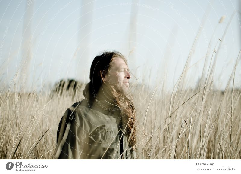 Hiddensee, see. Man Smooth Long-haired Hair and hairstyles Calm Serene Dream Dreamily Field Meadow Nature Life Sky Jacket Human being lovable.
