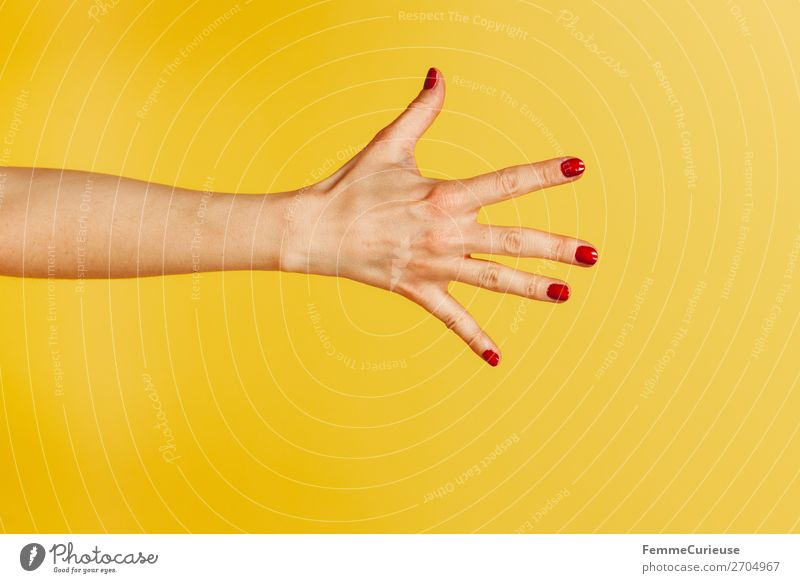 Forearm and hand with spread fingers against a yellow background Feminine Woman Adults 1 Human being 18 - 30 years Youth (Young adults) 30 - 45 years Creativity