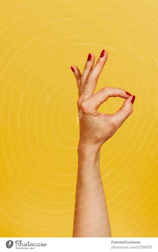 Hand signal for okay against a yellow background Feminine Woman Adults 1 Human being 18 - 30 years Youth (Young adults) 30 - 45 years Communicate Sign Gesture