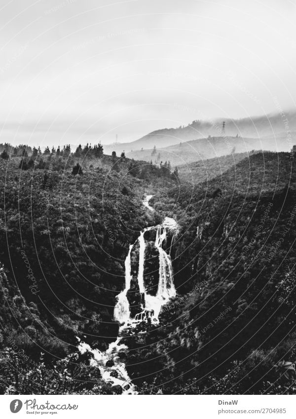 Foggy Nature Landscape Water Clouds Storm Waterfall Cold Moody Travel photography Vacation & Travel New Zealand Black & white photo Deserted