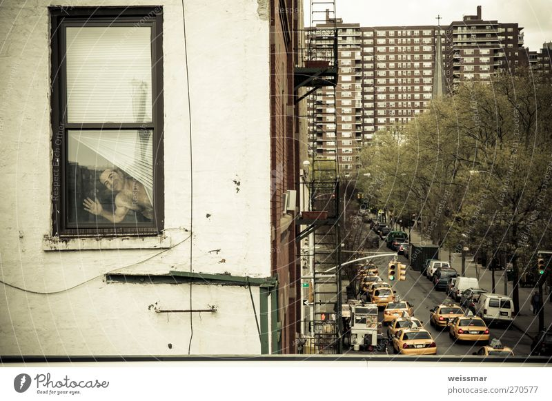 The man? At the window? New York City USA North America Town House (Residential Structure) Transport Means of transport Road traffic Street Joy Search
