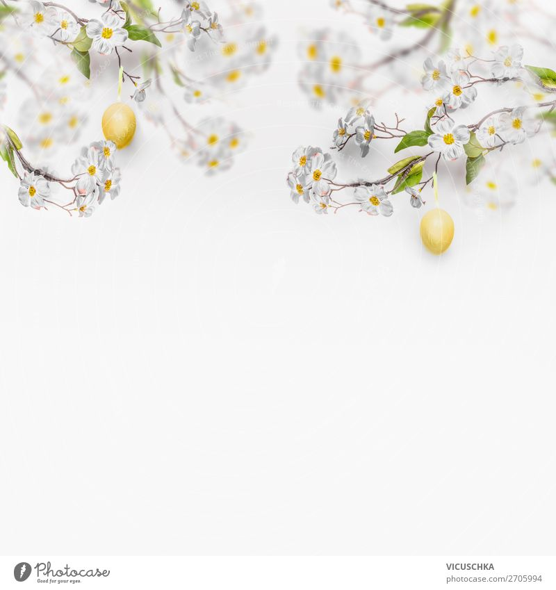 Nature Plant Background picture Yellow Blossom Spring Style Design Decoration Easter Symbols and metaphors Tradition Flag Easter egg Suspended Bright background