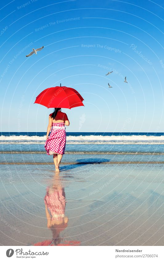 Walk by the sea Vacation & Travel Freedom Summer Summer vacation Sun Beach Ocean Human being Feminine Woman Adults Nature Landscape Elements Water Cloudless sky