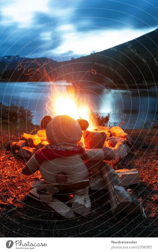 Two Teddy Bears at the campfire / Symbolism Friendship Vacation & Travel Adventure Freedom Camping Summer Team Nature Landscape Elements Beautiful weather Lake