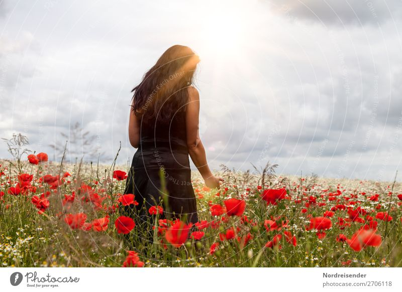 Sometime in summer. Harmonious Relaxation Trip Summer Human being Feminine Woman Adults Nature Landscape Sky Clouds Beautiful weather Flower Field Dress