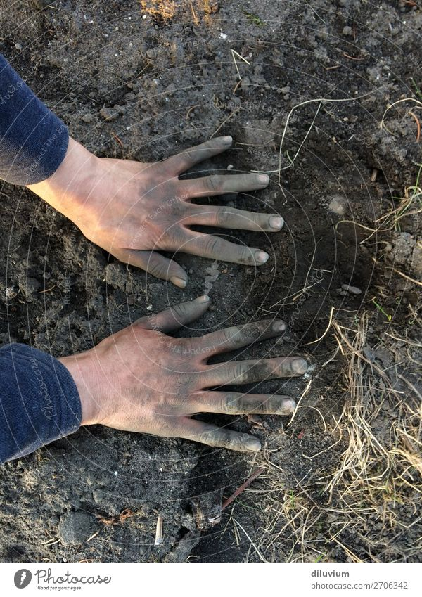 gardening Gardening Hand Fingers 1 Human being Earth Field Fingernail Dirty Sand Work and employment Free Determination Passion Colour photo Subdued colour