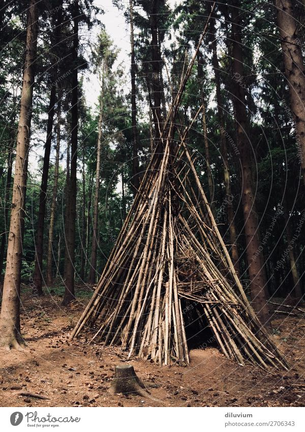 home Joy Trip Adventure Forest Woodground Branch Tree house Tee Pee Build Living or residing Brown Protection Colour photo Subdued colour Exterior shot Deserted