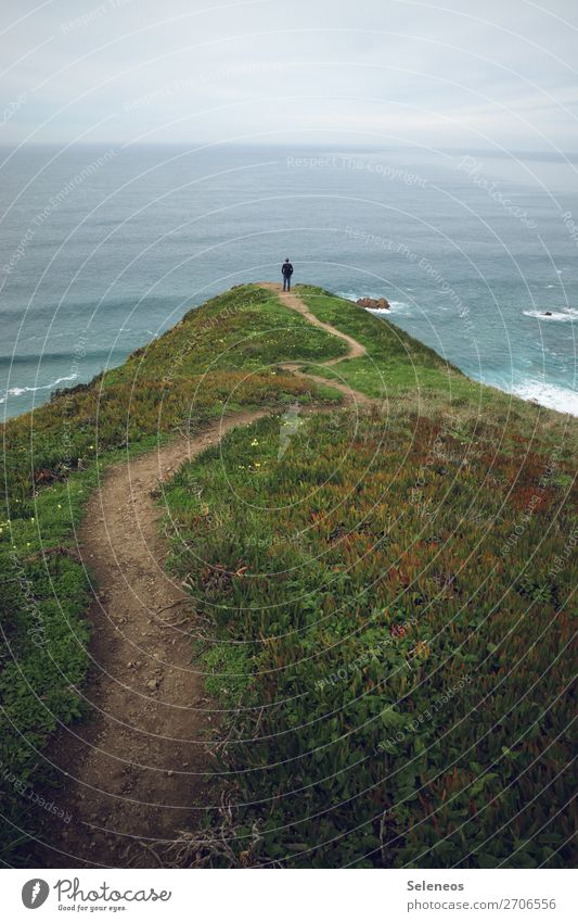 hiking trail Well-being Contentment Senses Relaxation Calm Vacation & Travel Tourism Trip Adventure Far-off places Freedom Ocean Waves Environment Nature