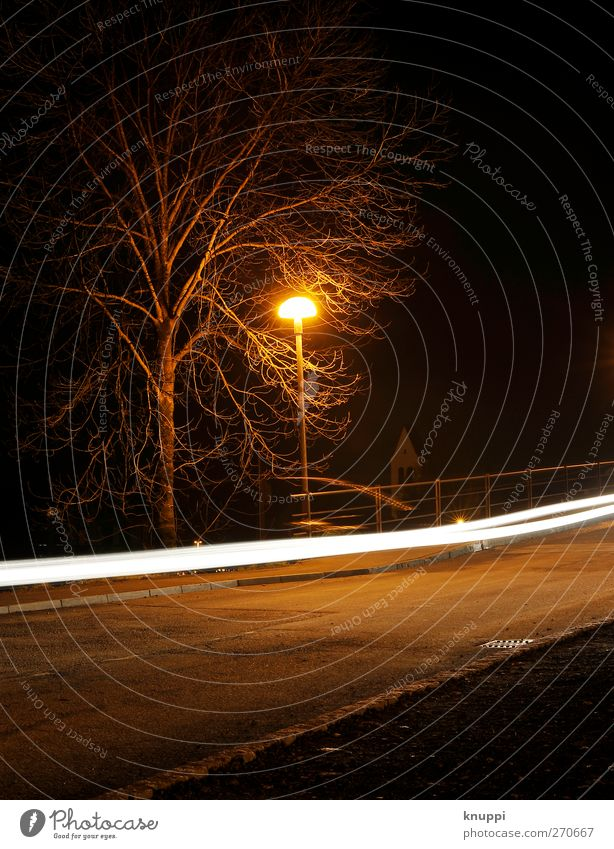 White Tree Black Yellow Street Lanes & trails Car Bright Orange Transport Speed Illuminate Driving Transience Running Traffic infrastructure