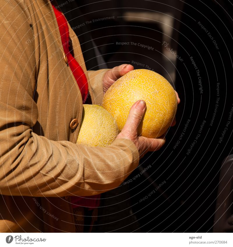 My whopper Fruit Melon Healthy Eating Feminine Hand Fingers 1 Human being Summer Jacket Select Shopping Delicious Brown Yellow Green Happy Contentment To enjoy