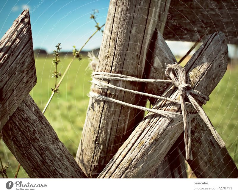 Meadow Wood Field String Fence Attachment Problem solving Wooden stake Allgäu Chained up