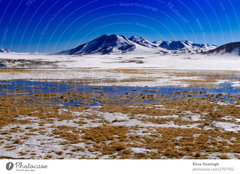salt lakes and mountains on the border of Chile and Bolivia Nature Landscape Mountain South America Adventure Colour photo Exterior shot Panorama (View)