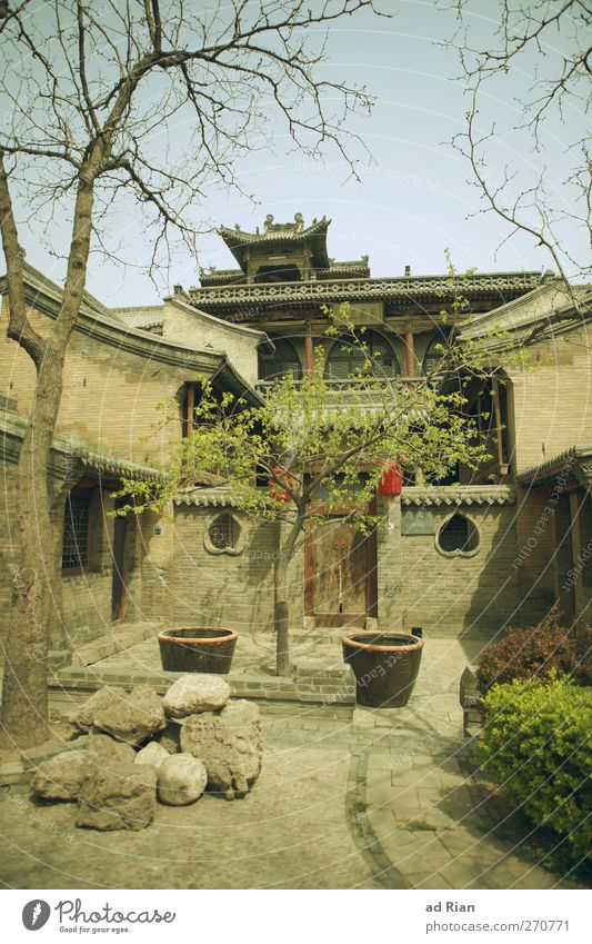 A.Family.House II Sky Cloudless sky Beautiful weather Plant Tree Bushes Park Pingyao China Town Downtown Old town Skyline Deserted House (Residential Structure)