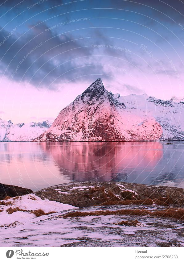 reine landscape-norway Vacation & Travel Nature Landscape Tree Ocean House (Residential Structure) Relaxation Calm Winter Mountain Snow Coast Rock Snowfall