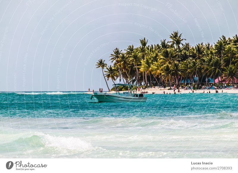 Saona Island near Punta Cana, Dominican Republic Vacation & Travel Tourism Summer Beach Ocean Environment Nature Sand Tree Leaf Coast Wanderlust America