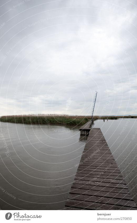 Sky Nature Water Plant Summer Clouds Landscape Wood Lanes & trails Coast Lake Brown Rain Island Harbour Lakeside