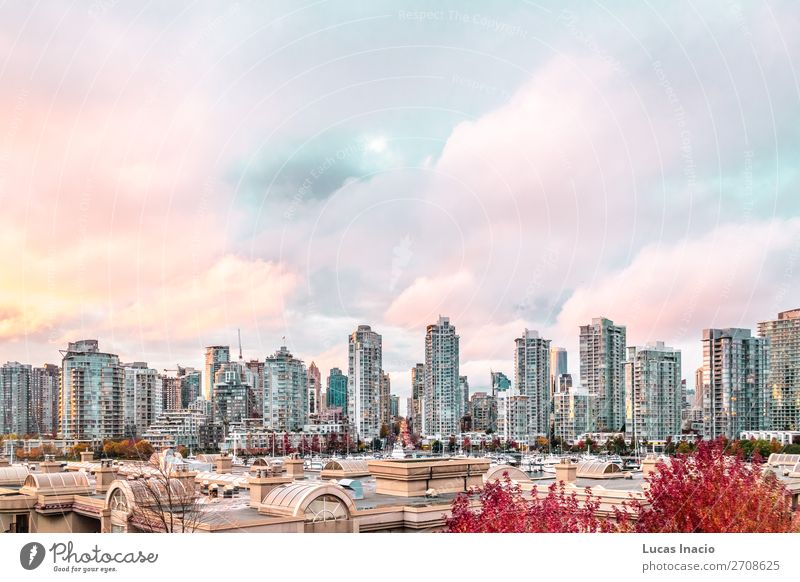 Autumn Sunset at Downtown Vancouver, Canada Island House (Residential Structure) Office Business Environment Nature Sky Clouds Tree Leaf River Skyline High-rise