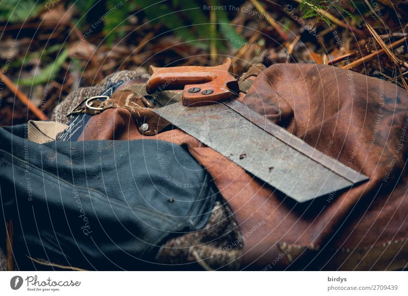 Handsaw - oldstyle Leisure and hobbies Home improvement Joiner Saw Nature Leather Bag Leather bag Tool Old Esthetic Authentic Uniqueness Sustainability Positive